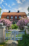 Altes schwedisches hölzernes Häuschen und Blumen Stockbilder