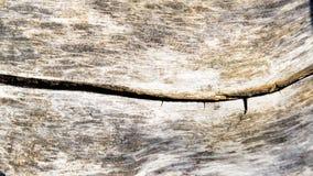 Altes Stück Holz Lizenzfreies Stockbild