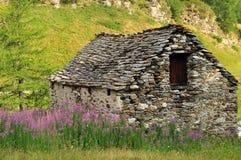 Altes Steinhaus und Wiese in den italienischen Alpen Stockbilder