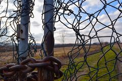 Altes Tor des Details mit Baum stockfotos