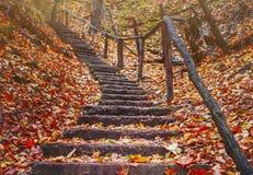 Altes Treppenhaus im Herbstwald in den Bergen Lizenzfreie Stockfotos