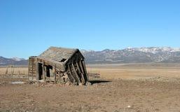 Altes verlassenes Bretterbude Stockbilder