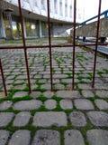 Altes verlassenes Gebäude mit Rost und Gras Stockfoto