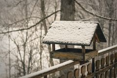 Altes Vogelhaus auf brench bedeckte Schnee im Winter Stockfoto