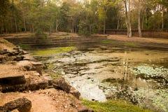 Altes Wasser-Pool in Angkor Thom, Kambodscha Lizenzfreie Stockfotografie