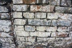 Altes Weinlesebacksteinmauer Beschaffenheits-Design Leerer Hintergrund des roten Backsteins für Darstellungen und Webdesign Viel  Stockbild