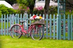 Altes Weinlesefahrrad mit Korb von Blumen im Gepäck Stockfoto