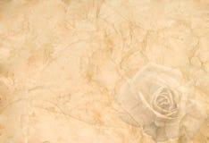 Altes zerknittertes Papier mit einer Rose Stockbilder