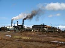 Altes Zuckerraffinerie- u. Zuckerrohrfeld Stockfotos