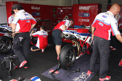 Althea Racing Stock Photos