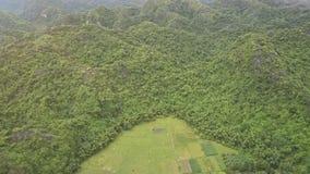 Alti campi di vista aerea fra l'altopiano tropicale sotto cielo blu