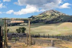 Alti ranch del paese e recinti per bestiame Rocky Mountains occidentale Immagini Stock