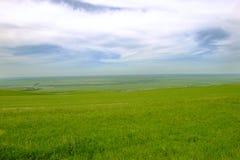 Altiplanicie verde Fotos de archivo libres de regalías