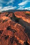 Altiplanicies volcánicas en California Foto de archivo libre de regalías