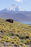 altiplano智利盐水湖miscanti山 免版税库存照片
