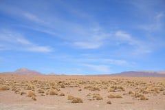 altiplano横向 免版税图库摄影