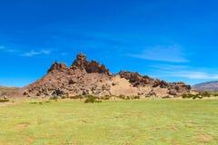 Altiplano横向 免版税库存图片