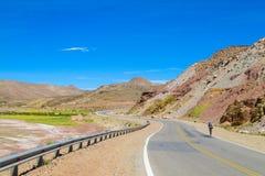 Altiplano沙漠干旱的风景和柏油路 免版税库存图片