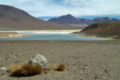 Altiplano 2 Photos stock