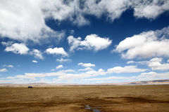 Altiplano. Qinzang altiplano, blue sky and white cloud Stock Photography