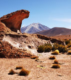 Altiplano Imagen de archivo