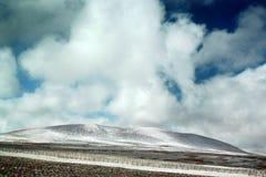 Altiplano Royalty Free Stock Photos