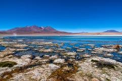 Altiplano błękita laguna Obraz Stock
