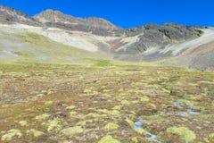Altiplano berg Arkivfoto