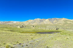 Altiplano bergby Royaltyfria Bilder