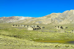 Altiplano bergby Royaltyfria Foton