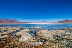 Altiplano blåttlagun Fotografering för Bildbyråer