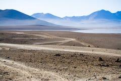 altiplano bolivia Arkivbilder