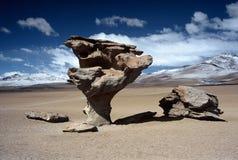 Altiplano in Bolivia,Bolivia. Rocks at Eduardo Avaroa National Reserve,Bolivia Stock Photos
