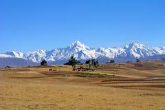 altiplano Bolivia pole Zdjęcie Royalty Free