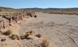 Altiplano. Bolivia Royalty Free Stock Photography