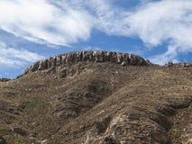 Altiplano in Bolivia Royalty Free Stock Photo
