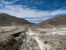 Altiplano in Bolivia Royalty Free Stock Photos