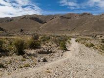 Altiplano in Bolivia Stock Image