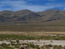 Altiplano in Bolivia Stock Photography