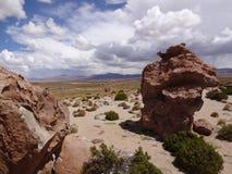 Altiplano de Bolivia Arkivfoton