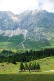 Altiplano de Montasio Fotografia Stock Libera da Diritti