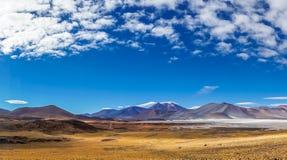 Altiplano lagun Salar de Talar i Chile av San Pedro de Atacama Royaltyfri Fotografi