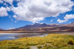 Altiplano laguna in sud Lipez reserva, Bolivia Royalty Free Stock Images