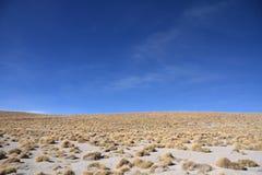 Altiplano Landschaft Stockfoto
