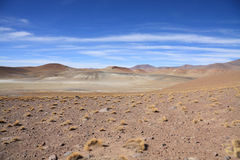 Altiplano lansdcape Royalty Free Stock Images