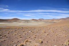 Altiplano lansdcape Lizenzfreie Stockbilder