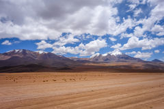 Altiplano mountains in sud Lipez reserva, Bolivia Royalty Free Stock Photography