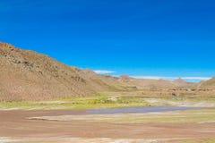 Altiplano torrt flodlandskap Arkivbilder