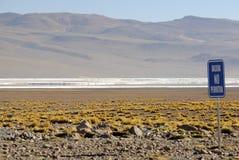 altiplanoandes bolivian colorada laguna Fotografering för Bildbyråer
