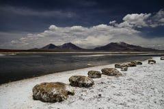 Altiplanopanorama met hemel in Chili Stock Foto's